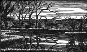 wood-engraving original print: The Pool for Mountains and Molehills by Frances Cornford
